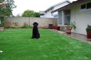 Hidden Meadows Artificial Turf Landscape Installers in 92026