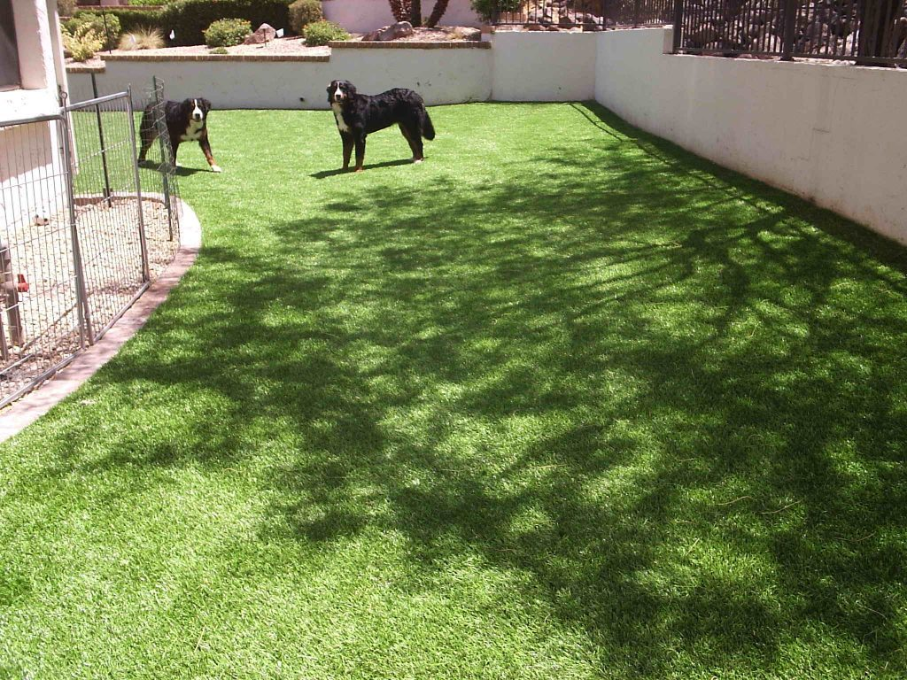 Synthetic Lawn Pet Turf Company San Marcos, Best Artificial Pet Turf Pricing