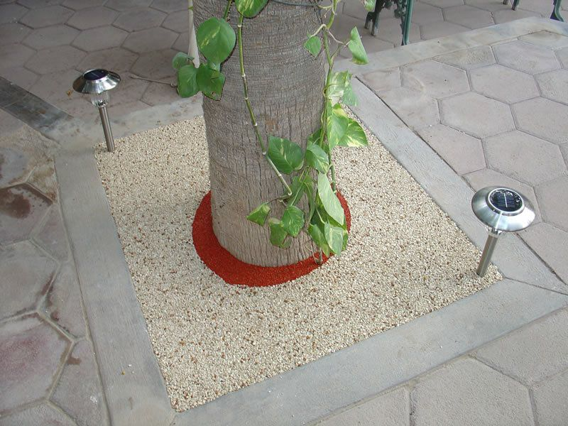 Rubber Tree Well Installation in San Marcos, Porous Tree Well